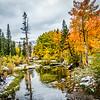 Fall colors along Bishop Creek Road