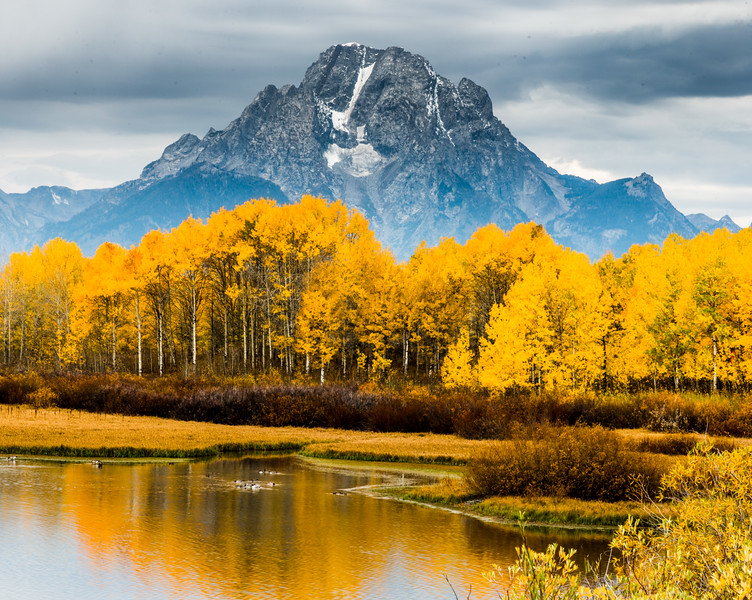 Ox Bow Bend-Mt Moran