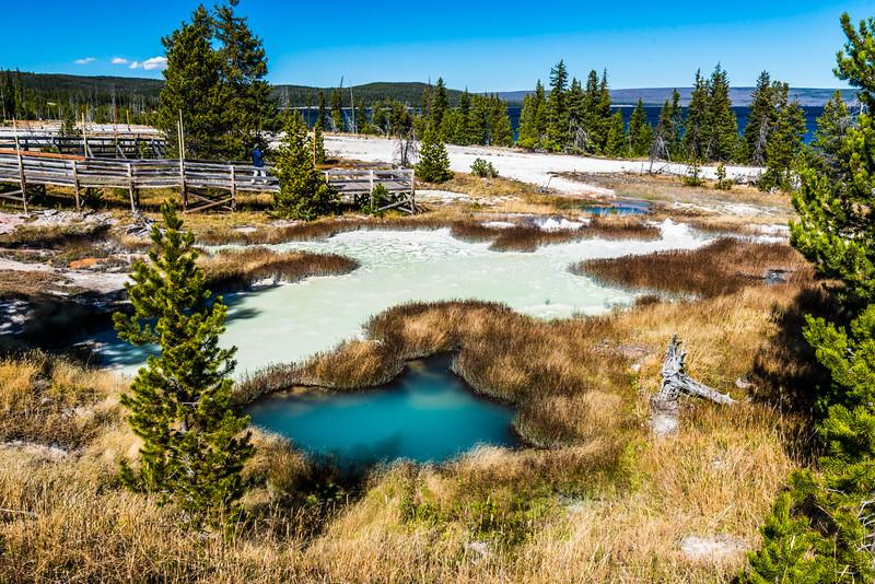 Yellowstone PSA Tours-57