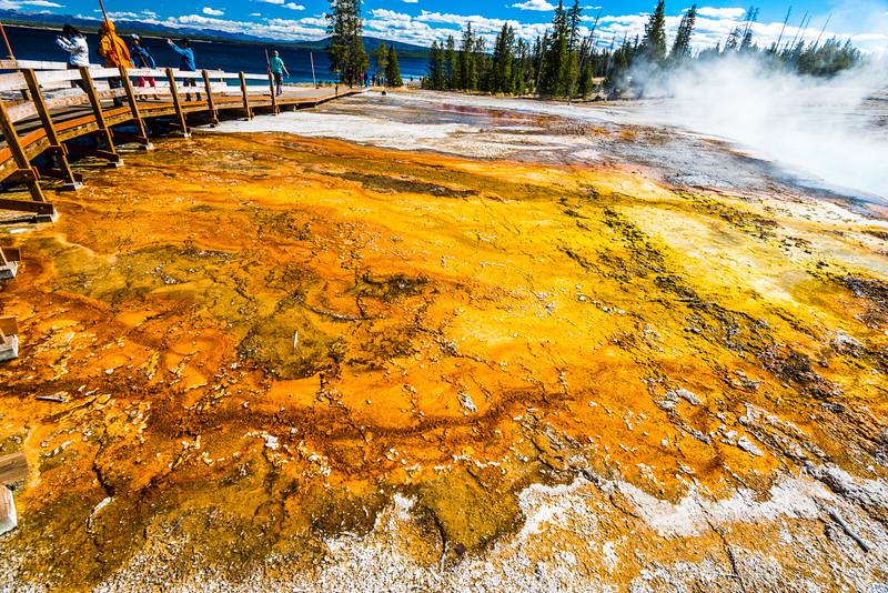 Yellowstone PSA Tours-53