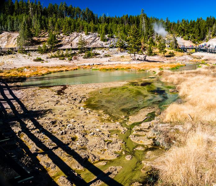 Yellowstone PSA Tours-48