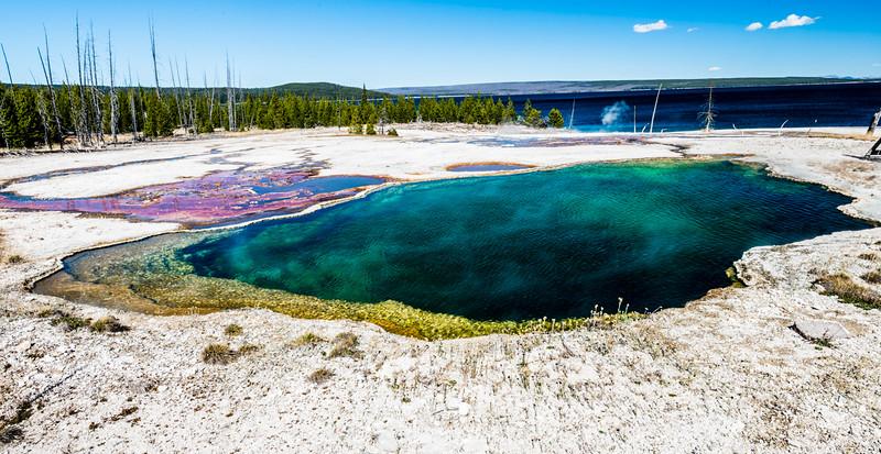 Yellowstone PSA Tours-51