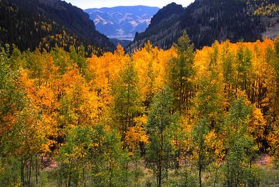 Willow Creek above Creede, Colorado