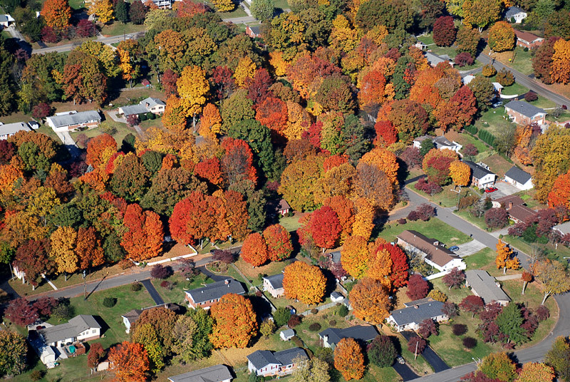 These are pictures of the fall colors in 2006