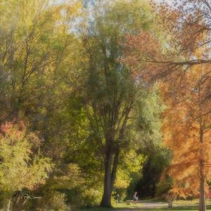 Kathryn Albertsons Park
