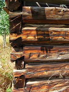 Abandoned log house on Hunter Creek trail north of Aspen