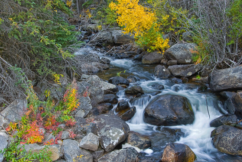 Crazy Woman Creek, Wyoming