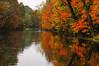 Fall Colors 14