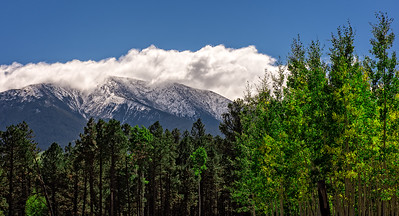 San Francisco Peaks, Forest road 151