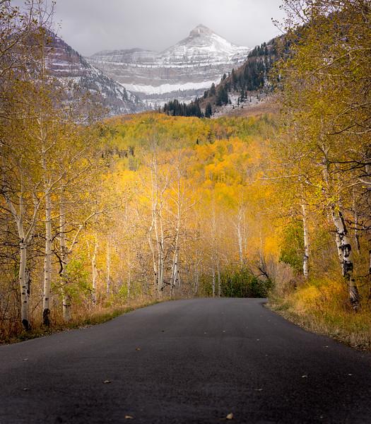 Fall along Alpine Loop