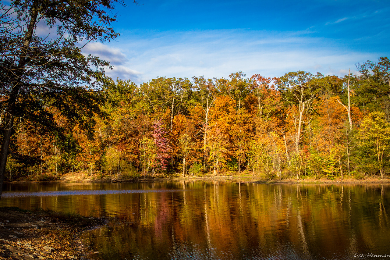 Miller's Grove Reflections Fall 2015