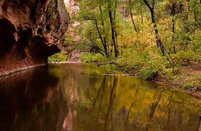 West Fork of Oak Creek