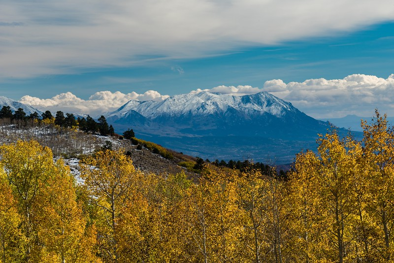 Aspens in fall color in snow along Utah Highway 12,with the Henry Mountains in the background.