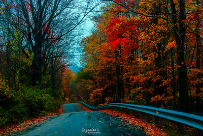 The road to the colors