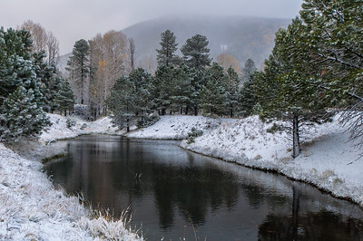 Lockett Meadow, Flagstaff