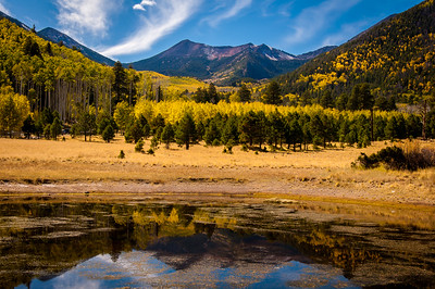 Lockett Meadow Campground, Flagstaff