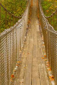 Swinging Bridge in Townsend