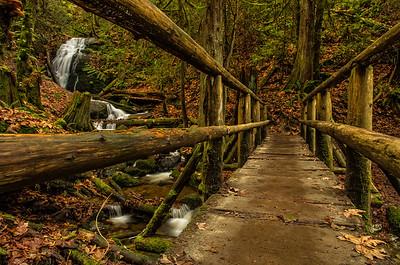 Coal Creek Park