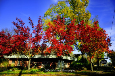 Fall Foliage around Town