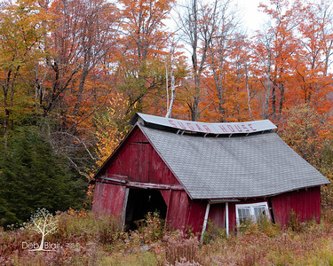 Abandoned Sugar House in Stoddard, NH-2013