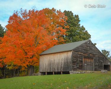 Barn in foliage - Mason, NH