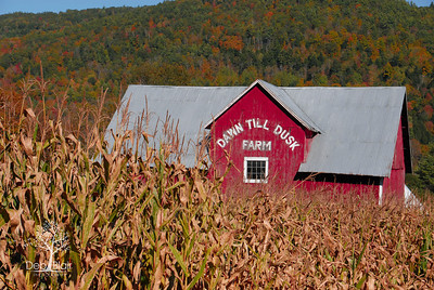 Dawn Til Dusk Farm in Vermont, 2013