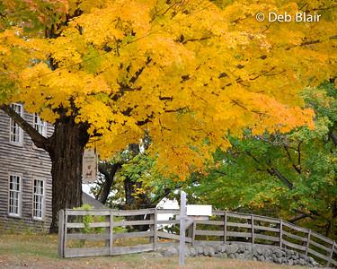 Beautiful foliage in Temple, NH