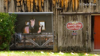 Barn Art - Stonegate, VT