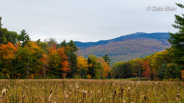 Mount Monadnock - Jaffrey Center View 1