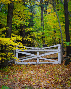 Gate with Heart in Temple, NH