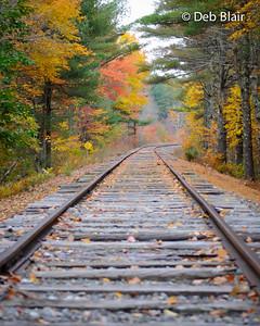 Foliage on the tracks - Lyndeborough, NH -1