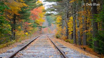 Foliage on the tracks - Lyndeborough, NH -2
