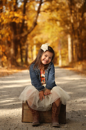 Fall Mini Sessions