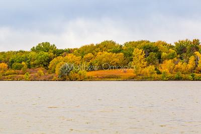 Fall amazing foliage colors on a shoreline