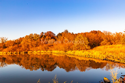 Fall reflections. Fall color reflection in water, Brown foliage marking end of autumn, Beautiful reflection in lake .