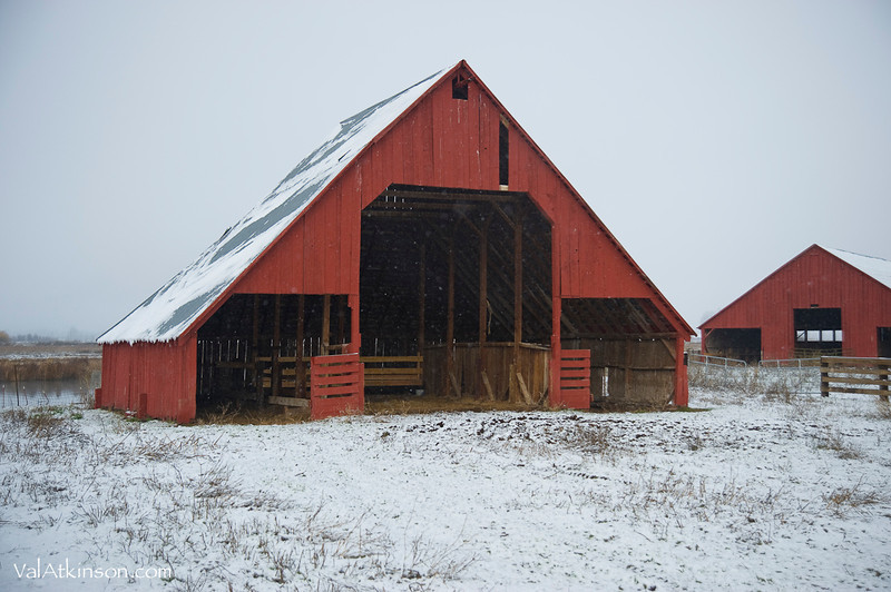 George Brown barns on Fall River. Now part of Smith Ranch