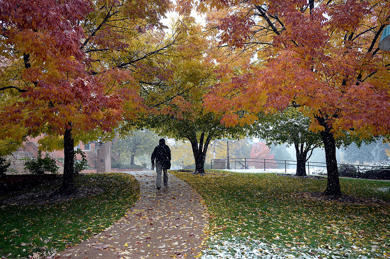 All bundled up in the light snowfall and cold temperatures, Ryan Tuley of Loveland walks under fall colored trees Monday, Oct. 9, 2017, near the civic center at Foote Lagoon in Loveland.  (Photo by Jenny Sparks/Loveland Reporter-Herald)