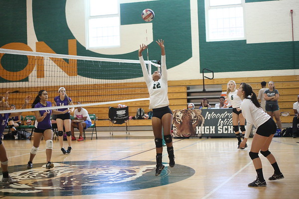 Volleyball: Wilson vs. Cathedral