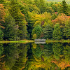 Bear Tree Lake Autumn