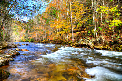 Whitetop River Fall