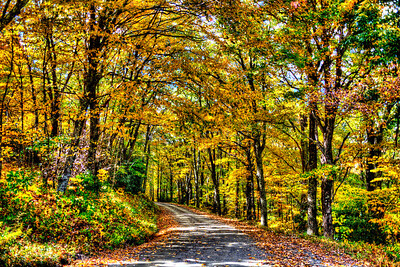 Autumn Backroads