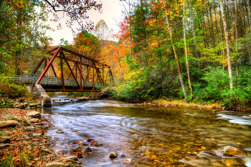 Laurel Creek Autumn
