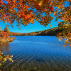 Hidden Valley Autumn