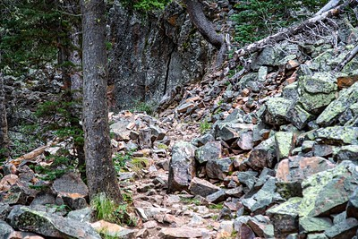 Memorial Falls Trail, Montana MK5D5598-1