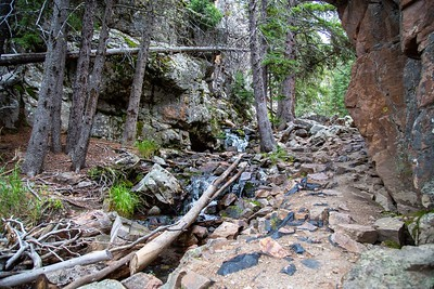 Memorial Falls Trail, Montana MK5D5600-2