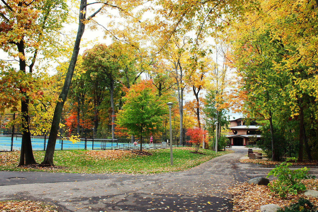 Fall at Calvin College