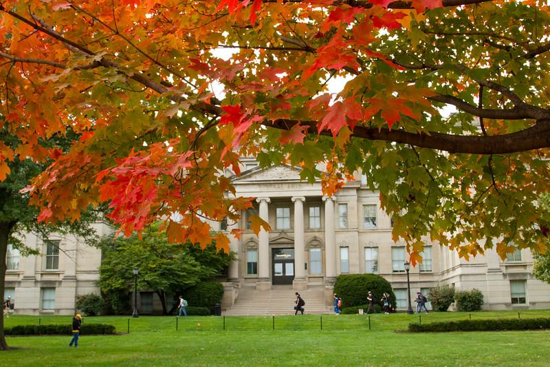 campus_fall_old cap_stu_2015_9851