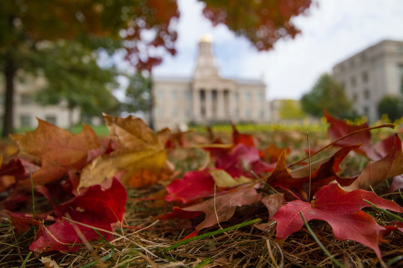 campus_fall_old cap_stu_2015_0011