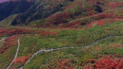4  Wasatch Mountain Park and hairpins