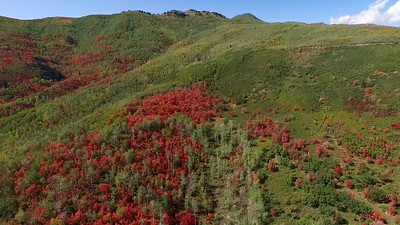 2-Hairpins and Wasatch Mountain Park